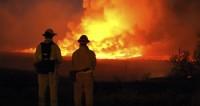 Огонь охватил почти 100 тысяч гектаров леса в Калифорнии