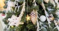 Задобрить «желтую собаку»: в чем встречать Новый год