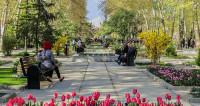 Женщин в Тегеране перестанут задерживать за нарушение дресс-кода