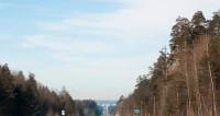 Водитель скорой погиб под Ярославлем после столкновения с лосем