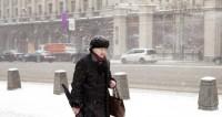 Москвичам напомнили о метели и ветре в пятницу