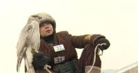Лучшие охотники с беркутами встретились в Казахстане