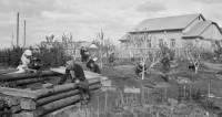 Колхозный рай: почему в советских деревнях кипела жизнь