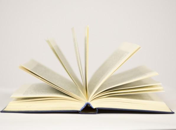 Литературоведы присудили премию за худший роман о сексе