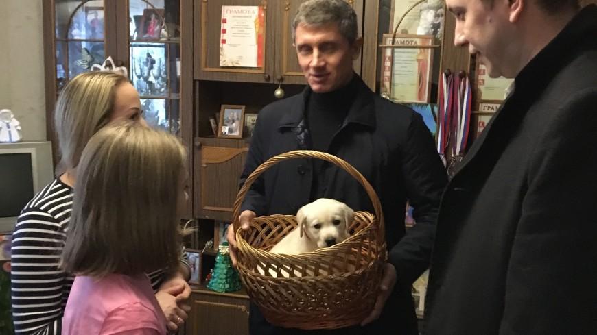 Школьнице из Брянской области подарили щенка после письма Путина