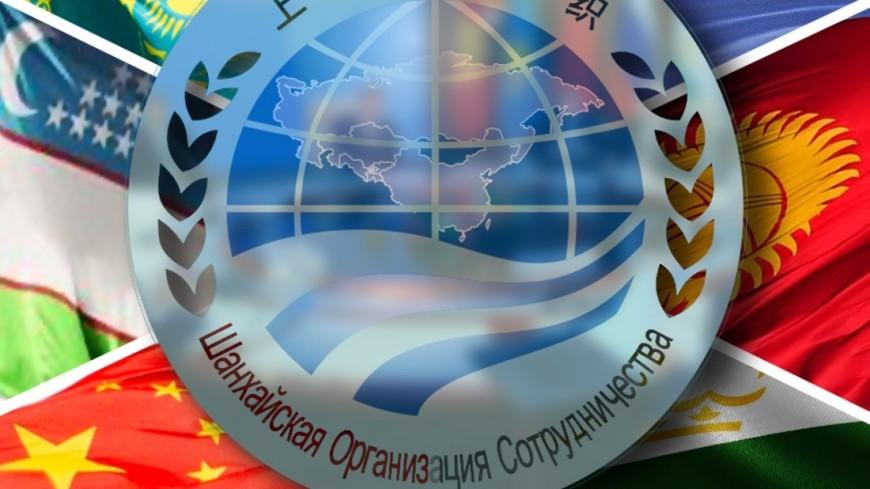 """Фото: """"«Мир 24»"""":http://mir24.tv/, коллажи, шос, шанхайская организация сотрудничества, логотипы"""