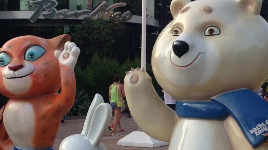 Депутат Госдумы: В ответ на санкции Россия может провести Игры доброй воли