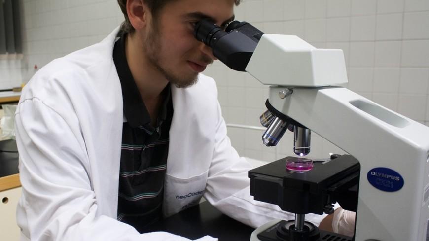 """Фото: Елена Андреева, """"«Мир24»"""":http://mir24.tv/, ученые, лаборатория, медицина, микроскоп"""
