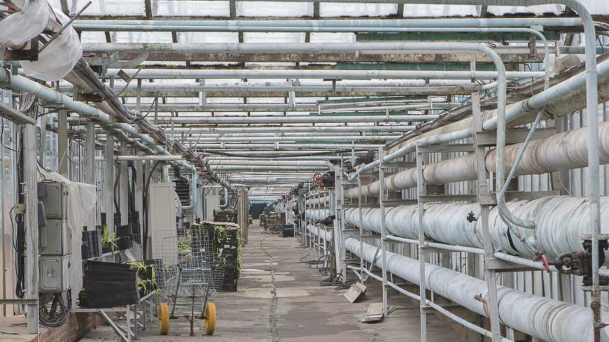 Дамаск договорился с боевиками по ремонту водонасосной станции