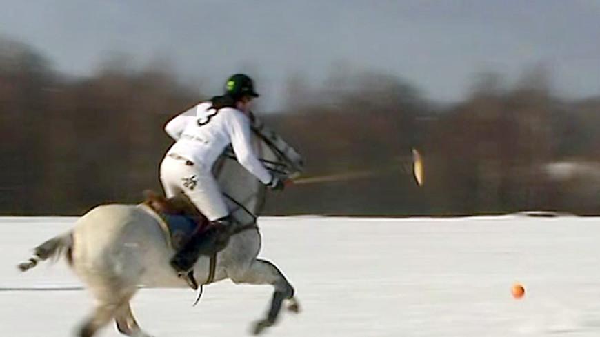 На шипованных подковах: в России впервые прошел турнир по конному поло на снегу