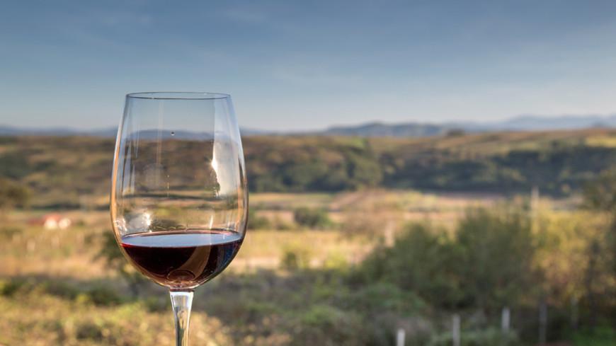 Российские вина привяжут к географии