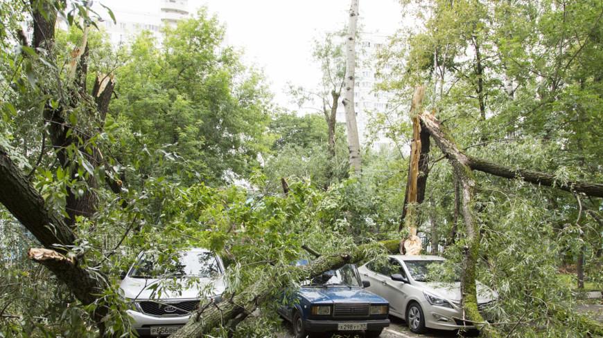 Ураган оставил Грузию без крыш и света