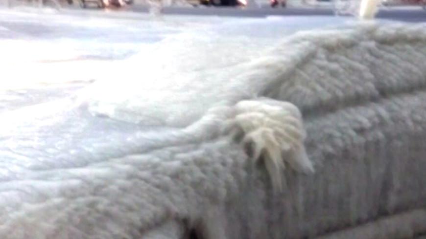 В США машины из-за морозов превратились в ледяные глыбы