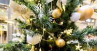 Праздником по мозгам: почему Новый год вызывает эйфорию и потерю памяти