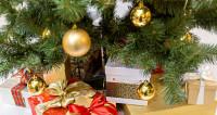 Новогодние подарки оставили россиян без денег