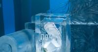 Зимние забавы: в Москве появится ледяной конструктор