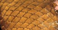 Чудо-фабрика: что шьют из рыбьей кожи