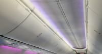 Буйный канадец избил стюардессу во время полета