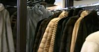 Меховой бизнес в России: не белый и не пушистый