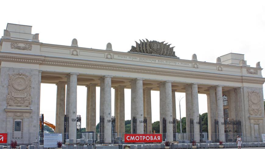 Посетители парка Горького летом смогут заняться плаванием и йогой