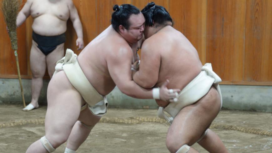 Новый год сумо