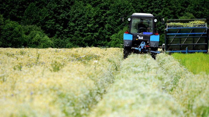Коллективизация 2.0: в Иркутской области возрождают колхозы