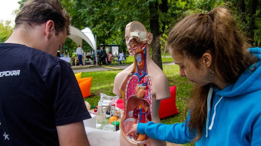 Торжество красоты и здоровья: как прошел фестиваль Life Picnic в Москве