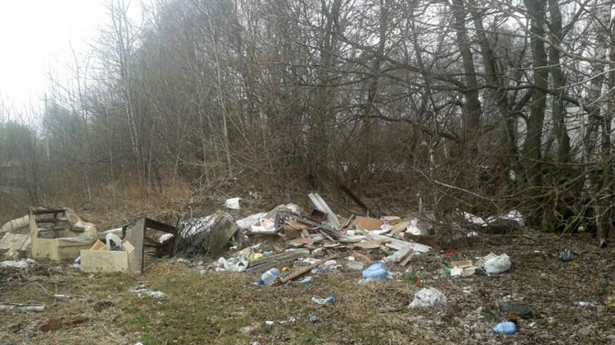 Штраф за мусор в Кыргызстане поднимут до $35