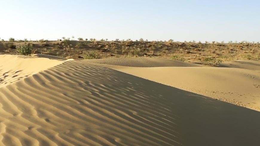 Titan Desert Race: участников веломарафона накрыла песчаная буря