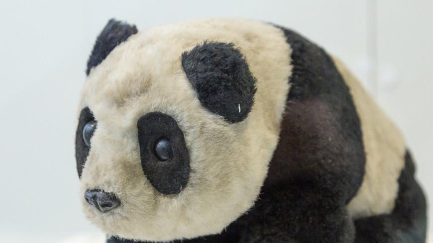 Ленивца из Лондонского зоопарка воспитывает плюшевая игрушка