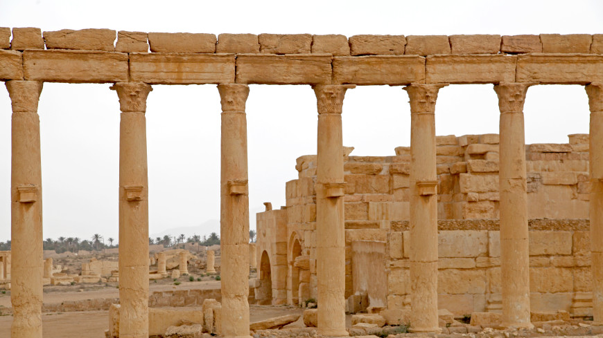 Шойгу сообщил о полном разминировании памятников Пальмиры