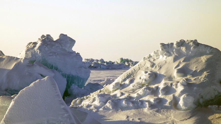 Глобальное потепление уничтожит 97% обитателей Арктики