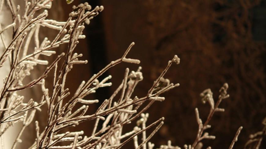 Синоптики предупредили о заморозках в Иркутской области
