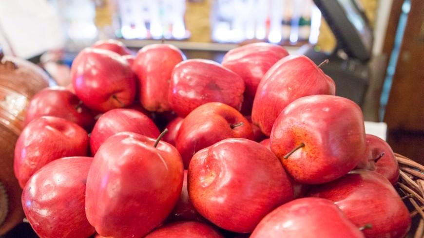 Казахстанские фермеры налаживают экспорт яблок в Россию