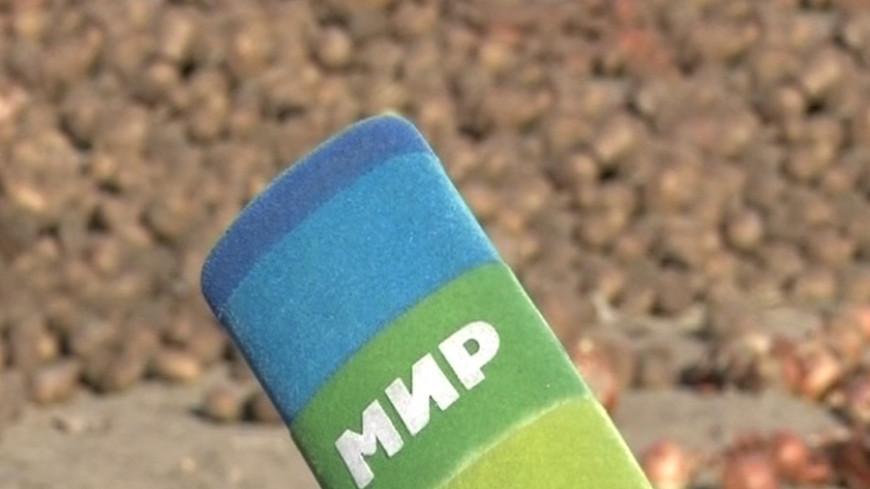 Бишкекский филиал «МИР 24» подвел итоги года