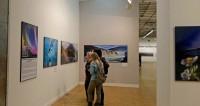 Скульптуры и инсталляции: в Москве пройдет фестиваль «Вдохновение»