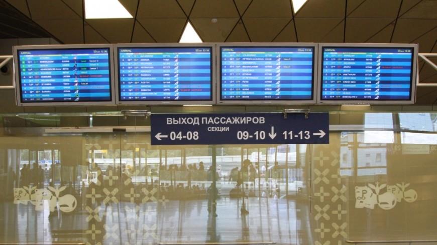 Московские аэропорты задержали десятки рейсов из-за непогоды