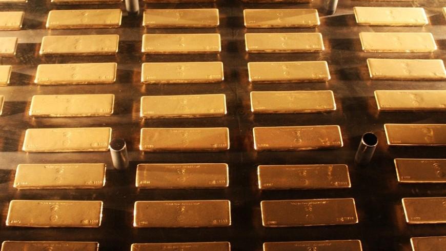 ВБерлине отыскали ивернули собственнику забытый под деревом килограмм золота