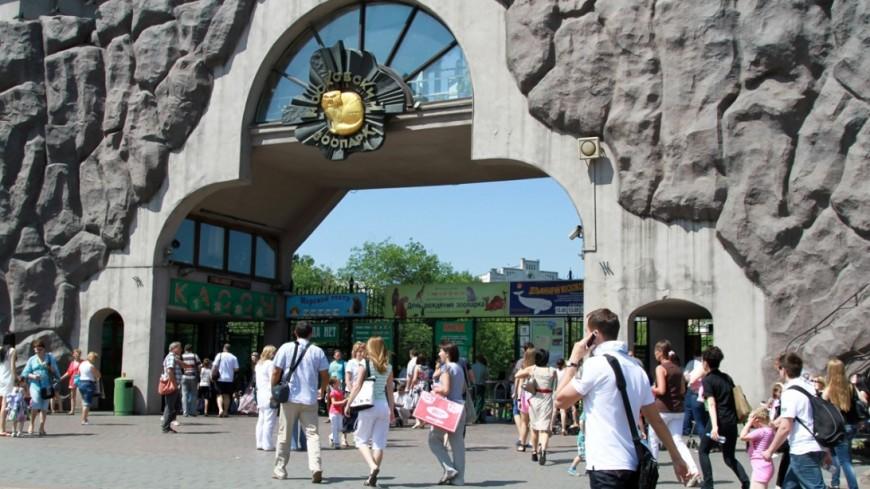 Московский зоопарк запускает вечерние экскурсии с директором