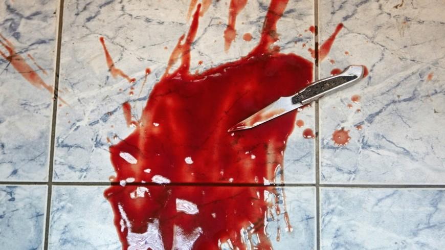 Москвич напал с ножом на свою мать и пытался выпрыгнуть из окна