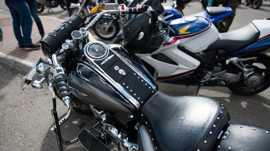 В Российской Федерации отменен мотопробег «Стоп-петух». Байкеры винят губернатора-гея