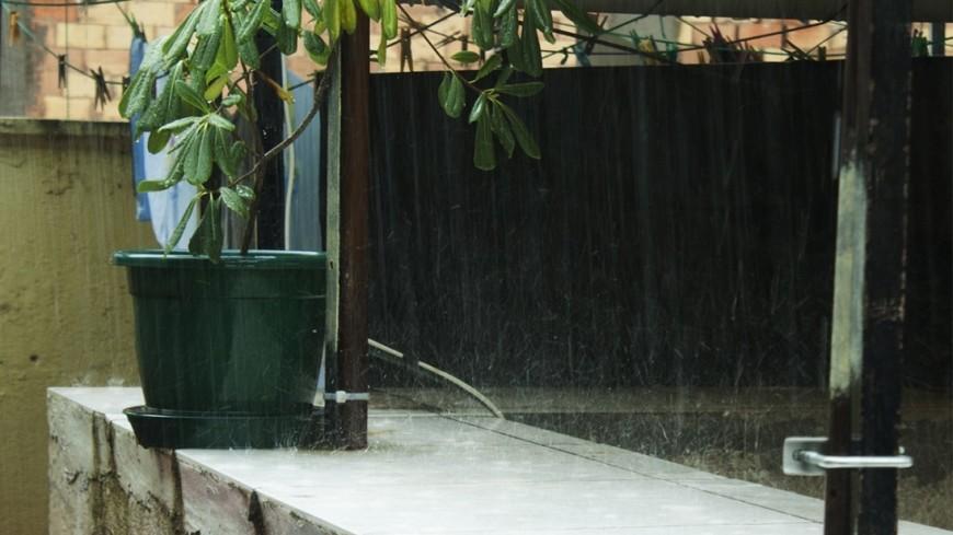 За сутки в столице выпало около 20 мм осадков