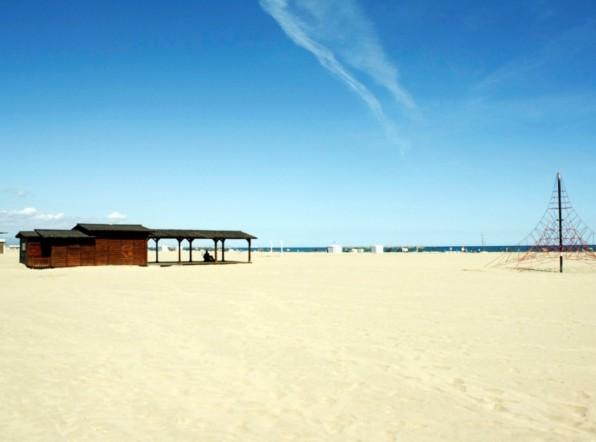 Несколько пляжей Мальорки закрылись из-за акулы