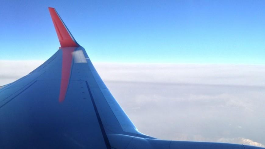 Самолет «Уральских авиалиний» совершил вынужденную посадку вМинводах