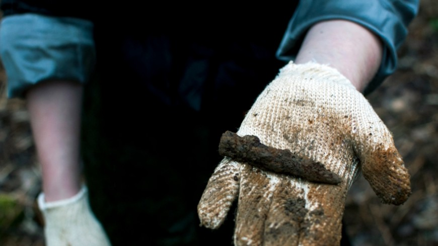 Инструкция «МИР 24»: как стать поисковиком и не подорваться на мине