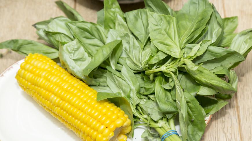 Не все овощи помогут в борьбе с лишним весом