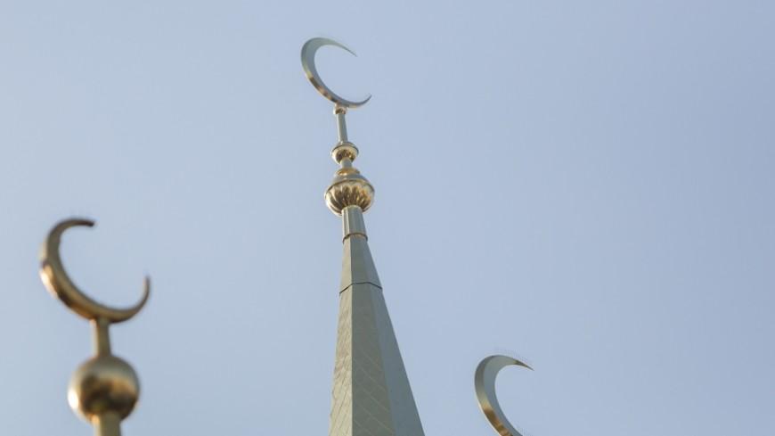 Американец намеревался взорвать две мечети после парижских терактов