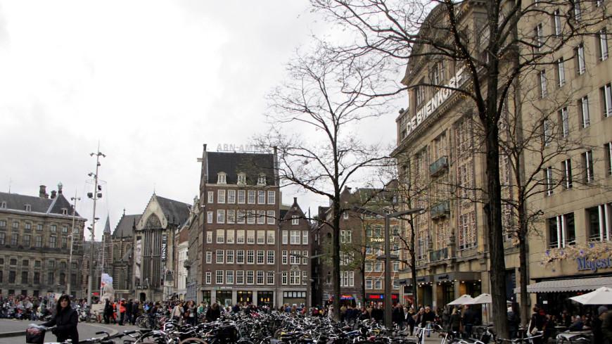 У кальянной в центре Амстердама нашли отрубленную голову в ведре