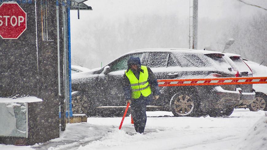 Минувшей ночью в Москве выпала половина месячной нормы осадков