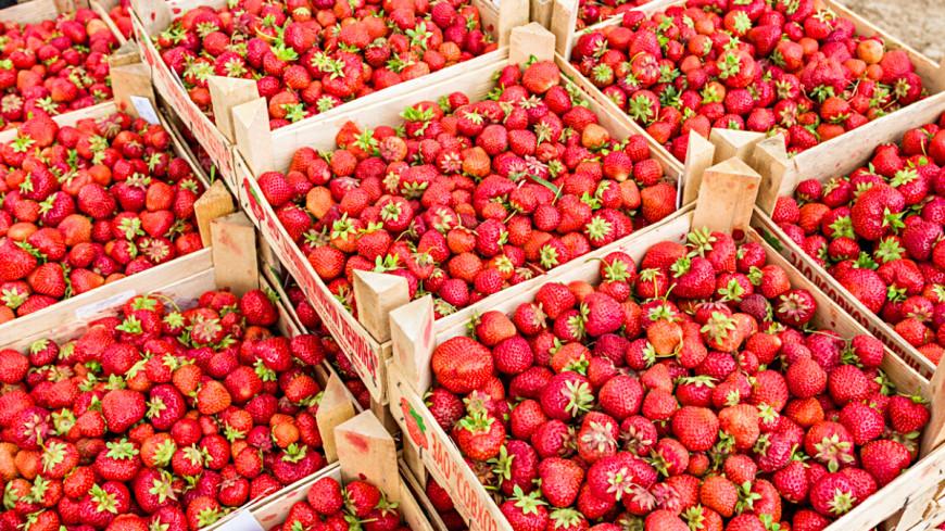 Коварная ягода: клубника и черешня ударили жителям Молдовы по карману